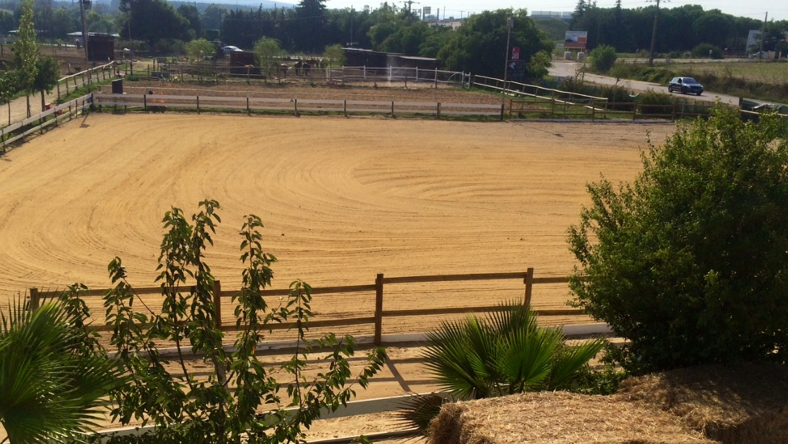 la carriere du poney club d'axelle