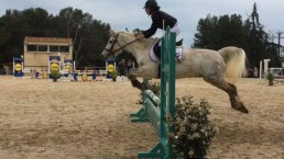 Poney Club d'Axelle